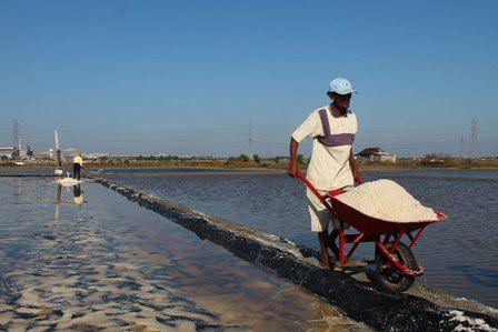 Garam Potensial Dikembangkan di Kalbar