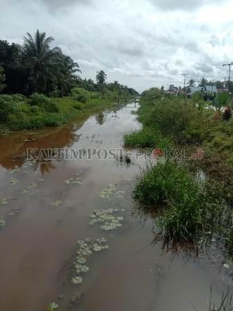 Mengungkap Ancaman Banjir di Kecamatan Babulu, Ribuan Hektare Sawah dan Rumah Sudah Terendam